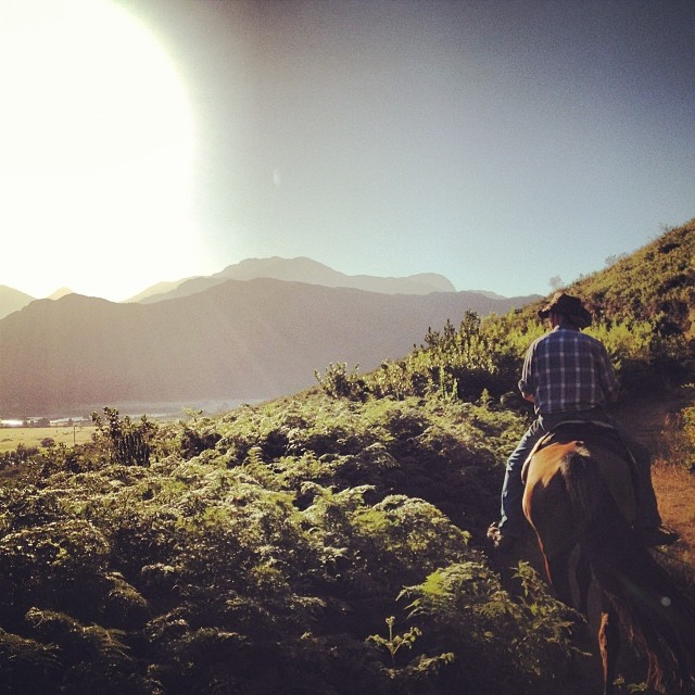 horseback riding south africa