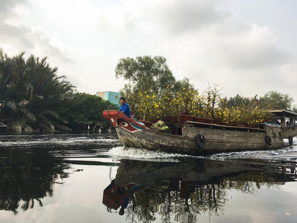 boat with Tet trees