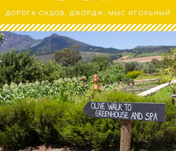 Зимние каникулы в ЮАР: Дорога садов, мыс Игольный и Фелддриф