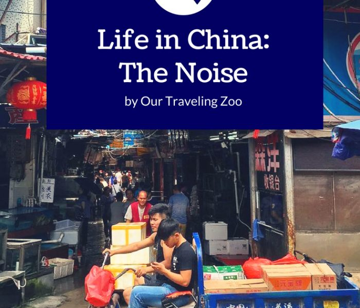 Life in China: Life in Shenzhen Means Noise