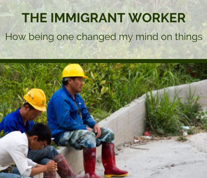 The Immigrant Worker