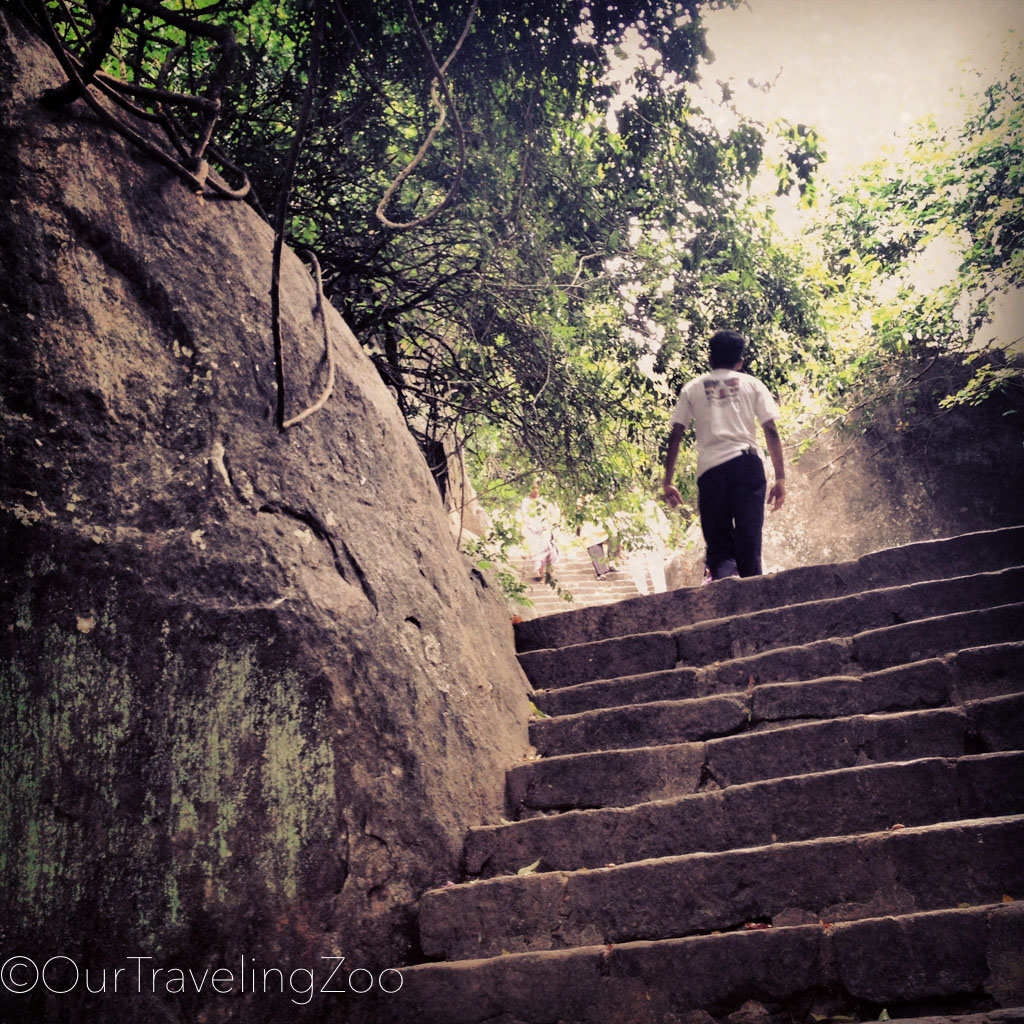 Stairway to Dambulla Temple in Sri Lanka