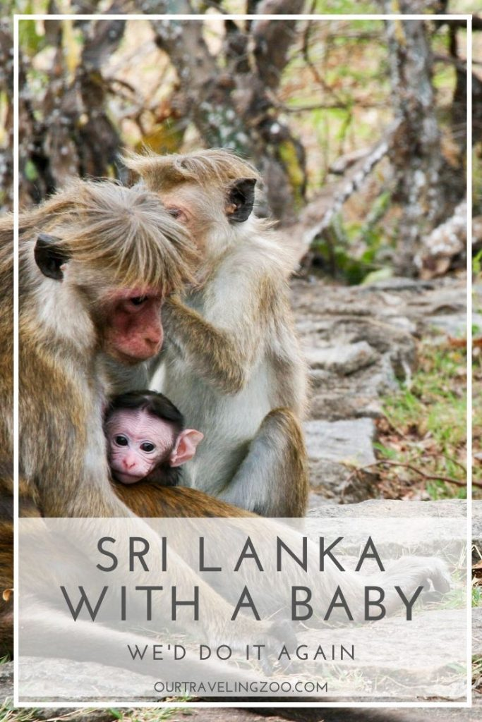 Sri Lanka was our first international trip with a baby. Can you travel to Sri Lanka with a baby? We think so-- ead on to find out why.