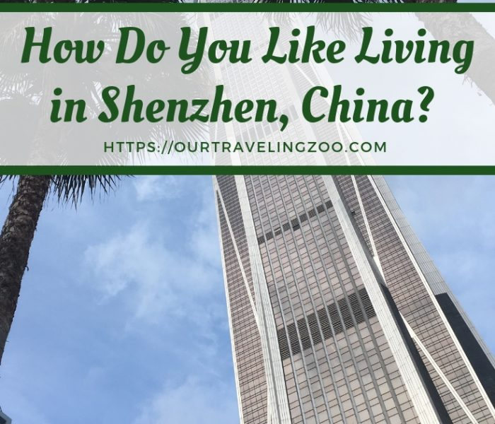 Living in Shenzhen, how Do You Like It?