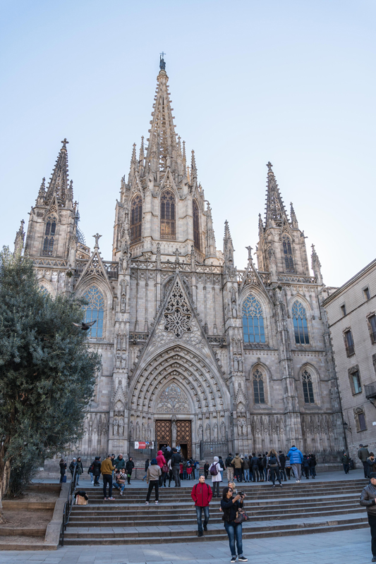 The construction of Barcelona Cathedral began back in the 13th century and some additions were made as late as 1913. The main draw of the cathedral for the kids are... the 13 white geese kept in the cloister