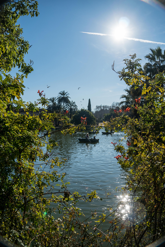 When we visited Barcelona with kids, Parc de Ciutadella was a big hit with them