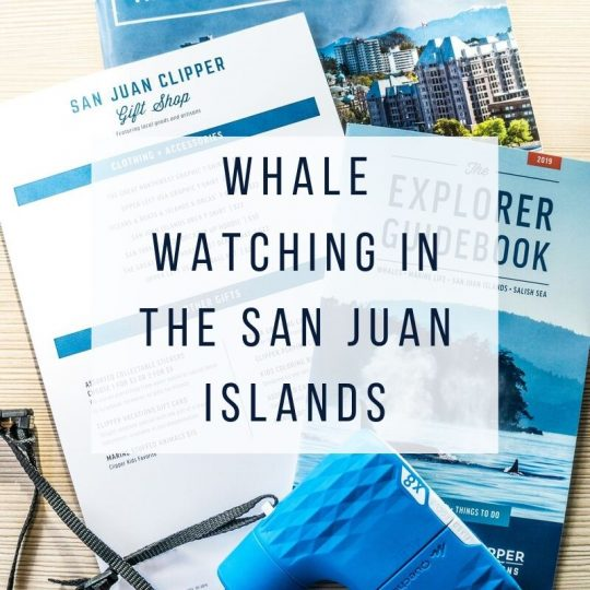 Whale Watching in the San Juan Islands. A Parents' Guide.