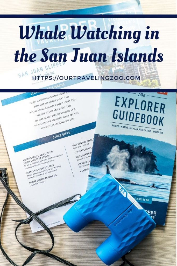 Whale Watching Tour Clipper Vacations
