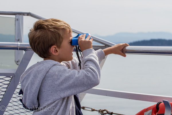 Boy looking at the sea through the binoculars