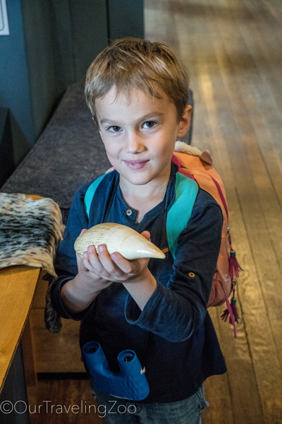 Boy holding a whale tooth