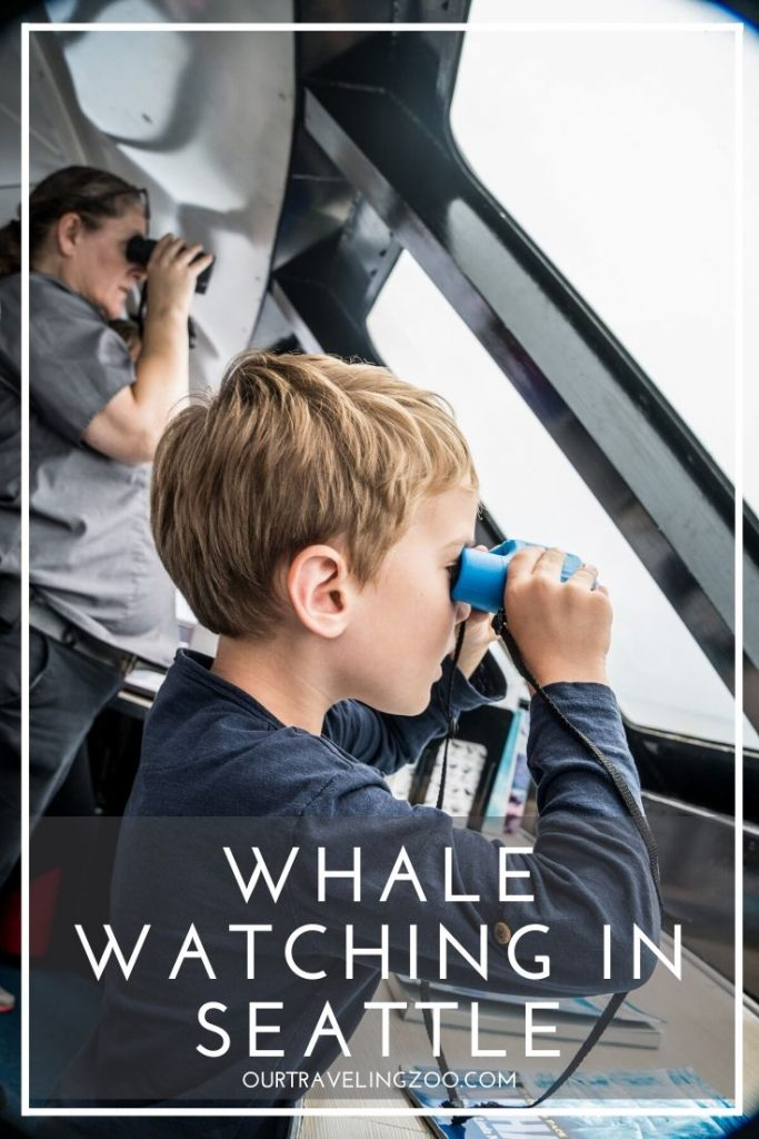 Whale Watching in Seattle with Clipper Vacations