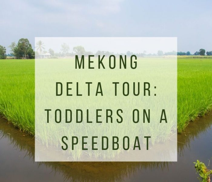 Mekong Delta Tour: Toddlers on a Speedboat