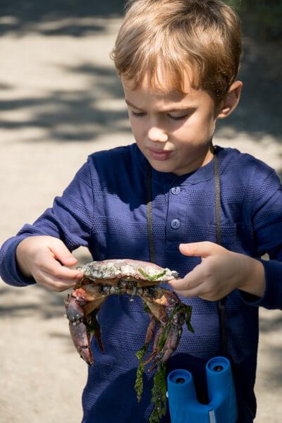 boy holding a big crab