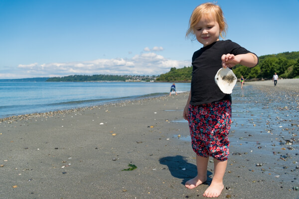 toddler holding a seashell at Discovery Park